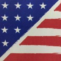 Comunicando iniciativas, ideias e informações em apoio ao fortalecimento do Espaços Americanos no Brasil