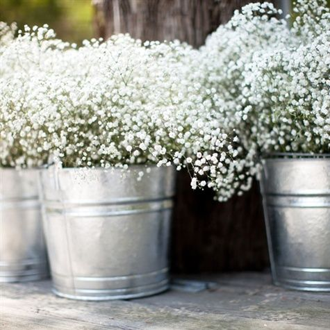 baby's breath & tin buckets...pretty for summer party centerpiece