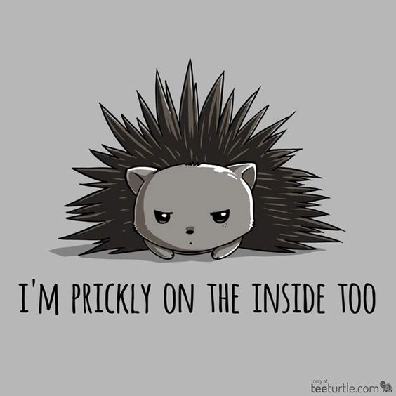 """This guy has Monday written all over him. Get """"Prickly on the Inside"""" for $12 for just 48 hours! (ò_óˇ) http://www.teeturtle.com/products/prickly-on-the-inside"""