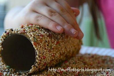 Make Toilet Paper Roll Bird Feeders!