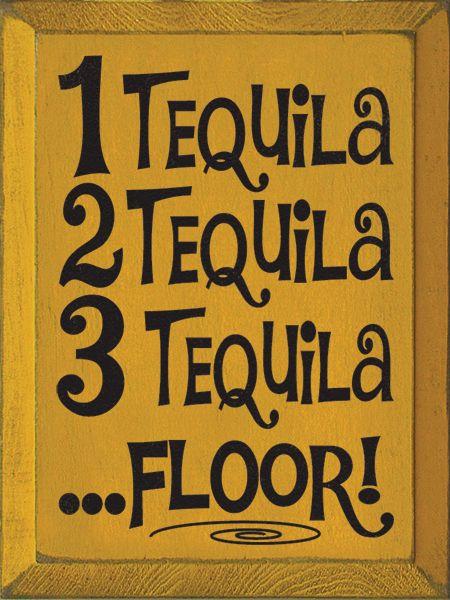 1 tequila 2 tequila 3 tequila floor tequila quotes for 1 tequila 2 tequila 3 tequila floor lyrics