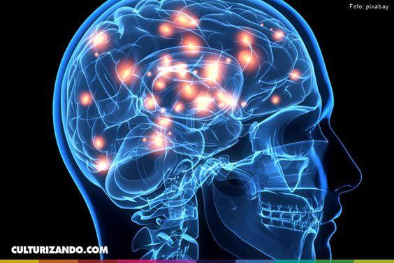 HoyVerde.com: 6 ejercicios para tu cerebro
