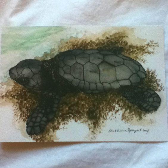 loggerhead sea turtle postcard. watercolour by katarina bjorkqvist. sold by archelon, the sea turtle protection society of Greece. www.archelon.gr