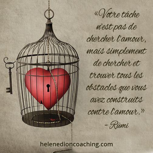 «Votre tâche n'est pas de chercher l'amour, mais simplement de chercher et trouver tous les obstacles que vous avez construits contre l'amour.» – Rûmî