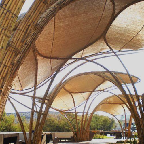 contructies van riet en bamboe bouwen: