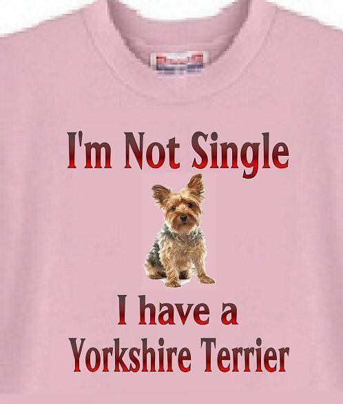 I Love My Morkie Morkshire Terrier Men/'s Novelty T-Shirt
