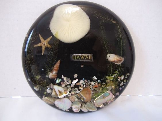 Vintage Lucite Sea Shell Trivet Hawaii Souvenir Starfish Tropical Beach Decor