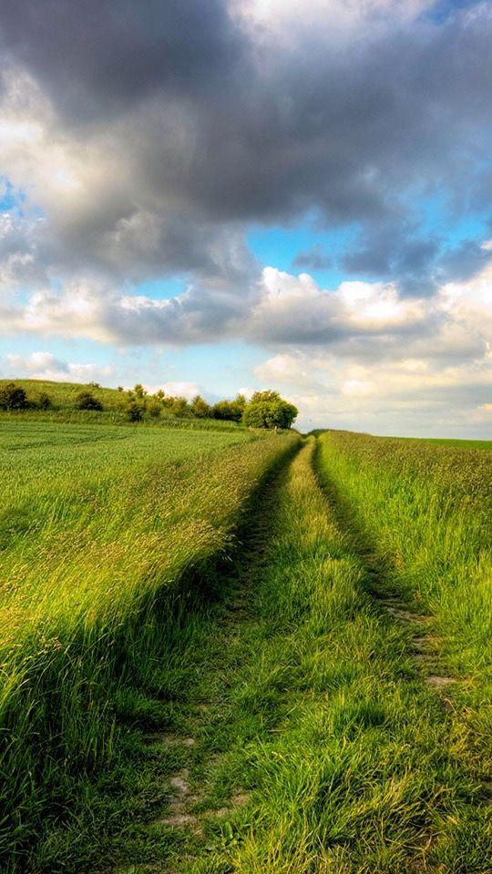 Summerfieldsgreenroadcloudyskyendlessxjpg - The mesmerising beauty of moravian fields photographed by marcin sobas