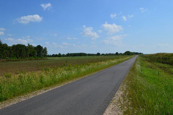 Endlose Weite, lange Wege, Fahrradweg, Moorerlebnisroute, Ostfriesland, Emsland, Oldenburger Münsterland, Niedersachsen, Moorgebiet