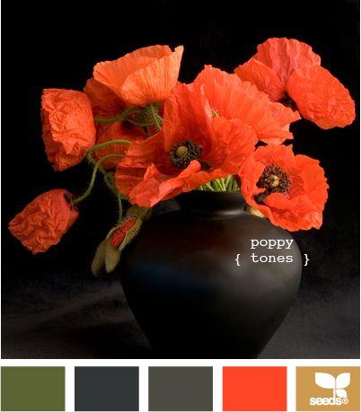 Autumn : poppy tones
