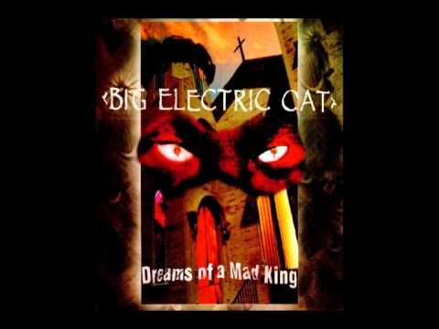 Big Electric Cat - Orchid Dreaming - YouTube