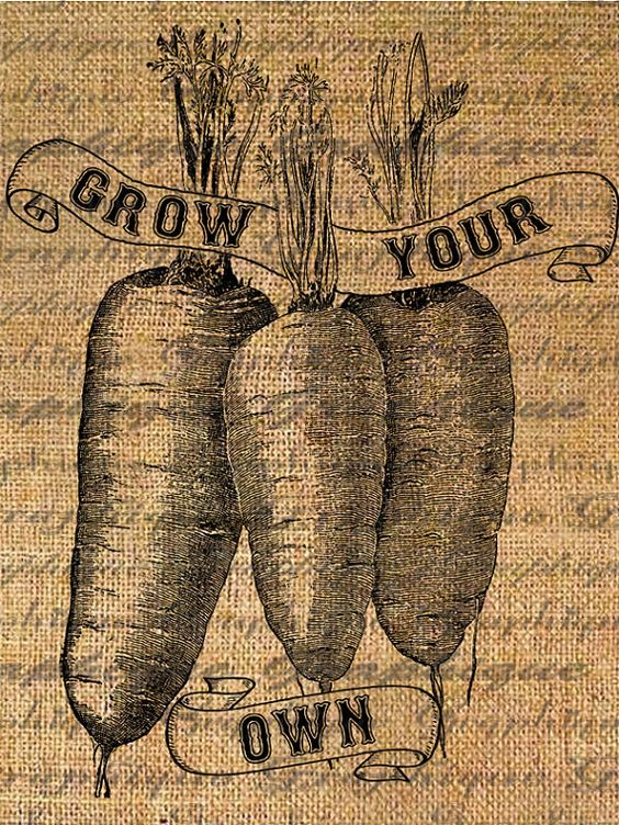grow your own, graphic