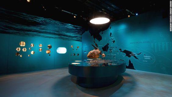 Bảo tàng Lee Kong Chian mở cửa lúc 10 giờ sáng , đóng cửa lúc 7 giờ chiều.