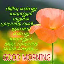 Best Tamil Good Morning Pics Hd Download Good Morning Images Good Morning Photos Morning Pictures