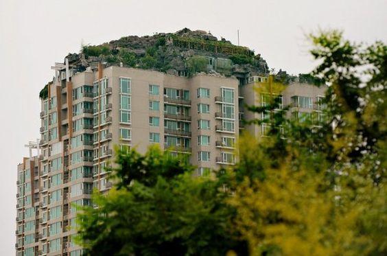 Beijing man builds rock villa atop apartment tower - Yahoo! News Singapore