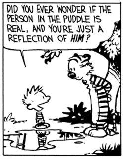 Did you ever wonder...? Calvin & Hobbes