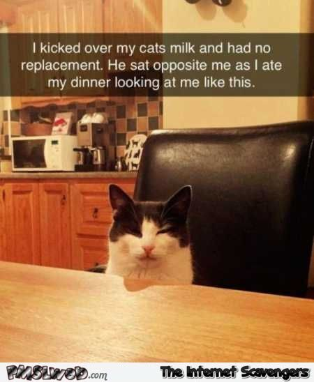 Funny Sunday picture collection – Another LOL compilation | PMSLweb