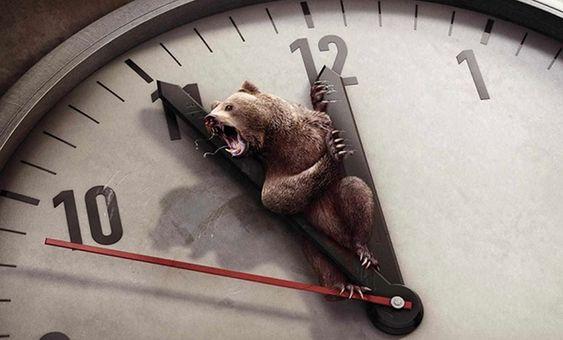 30 campanhas de proteção aos animais chocantes