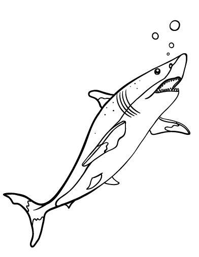 Printable shark coloring page