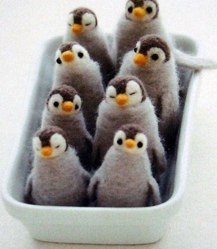 Penguins are better than eggs