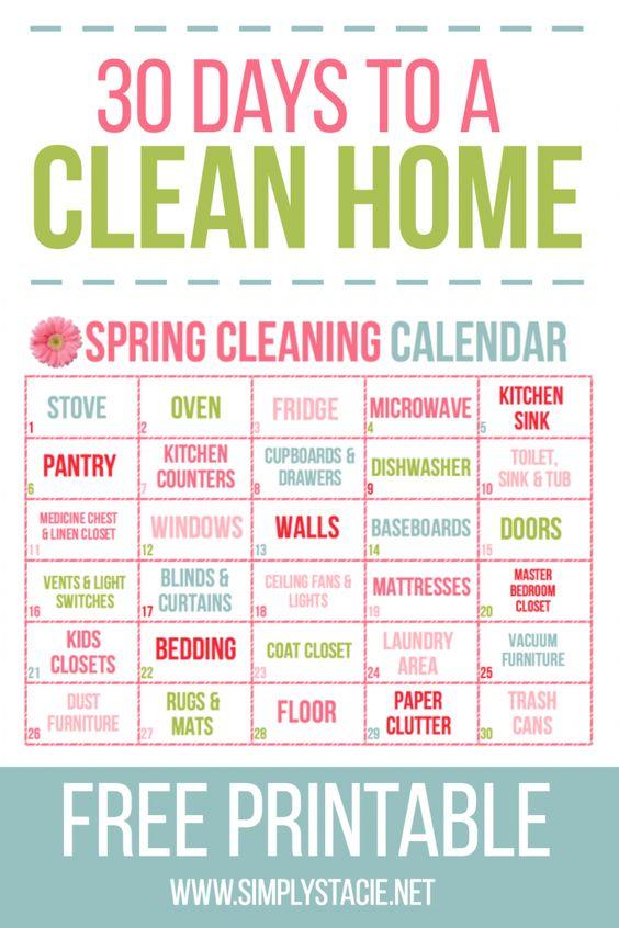 Day Spring Cleaning Calendar  Cleaning Calendar Calendar