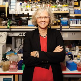 Building on her Nobel Prize-winning research on cell function, Elizabeth H. Blackburn is trying to find a simple measure of a person's health risks