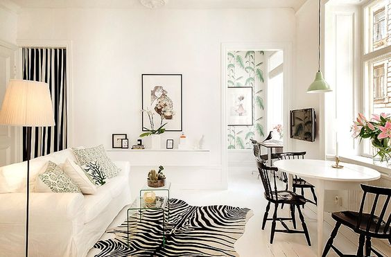 black and white and tropical