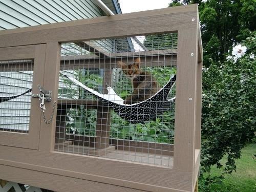 Window Catio Window Catio Uk Outdoor Pet Enclosure Catio Cat Enclosure