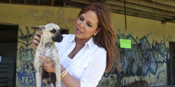 La animadora visitó el balneario de Vega Baja para llevarles comida a perros y caballos abandonados en el área