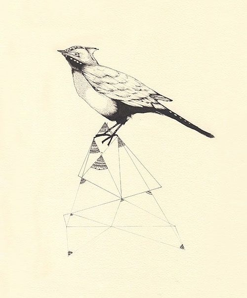 Birds Tattoos Illustrations: Bird, Drawing, Geometry, Illustration