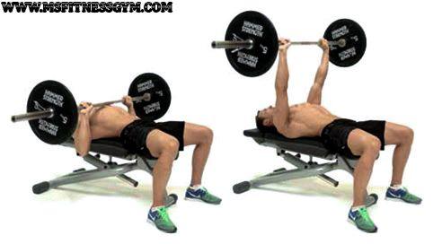 فوائد تمارين البنش برس Gym Gym Equipment Row Machine
