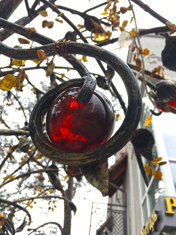 Янтарные яблочки в Светлогорске. Фото Жени Шведы