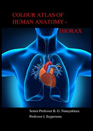 Download Colour Atlas Of Human Anatomy Thorax 1st Edition Pdf For