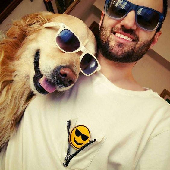 Ready to go!  . Organic t-shirt from @emotionzipshirt . #emoticon #emoticons #outfit #instalove #instagood #picoftheday #present #italia #italy #dog #dogs #pet #golden #goldenretriever #amore #valentineday #sorpresa #regali #regalo #maglia #maglietta #modaitaliana #organic #organiccotton #felpa #abbigliamento #love #maschere #sanvalentino #carnevale2016