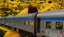 Trans Canadian Rail Trip.