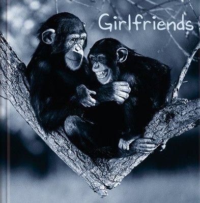 #Geschenkbuch  - #Girlfriends, mit lustigen #Tierfotos und Sprüchen.