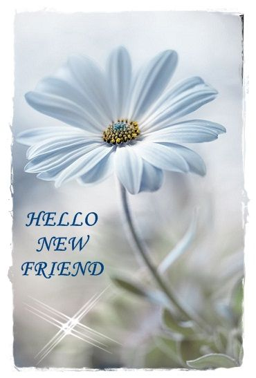 NewFriend.jpg: