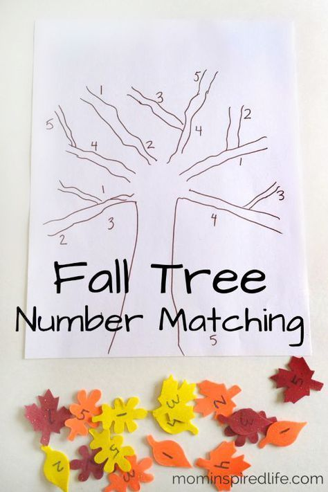 Fall math activity for preschool. Practice number identification with fall leaves.