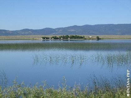 Browns lake montana fish wildlife parks reminders for Fish wildlife and parks