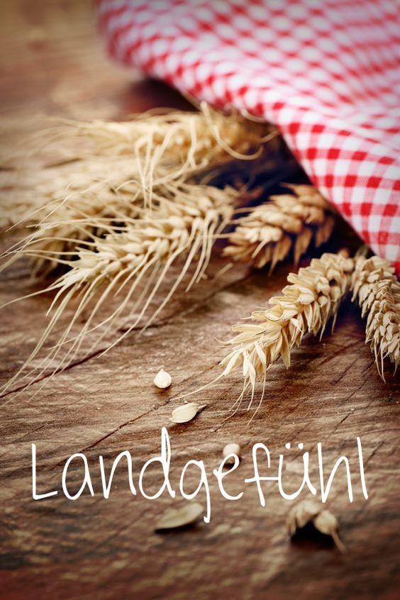 #Country #feeling #Land #Gefühl #Landgefühl #Emotionen #Freiheit #Ernährung #Essen #Eindrücke