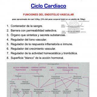 www.kardia.cjb.net - Cátedras de Fisiología I y Cardiología - Facultad de Medicina, U.A.E.M. 1 David Martínez Duncker R. - M.D.,Ph.D. Catedrático de Tiempo. http://slidehot.com/resources/cardio-fisiologia.18898/