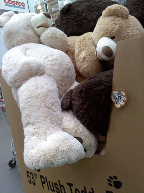 pinterest big teddy bear big teddy and selfies