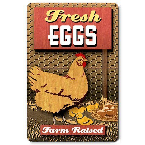 Farm Fresh Eggs Country Chickens Chicken Poultry Food Metal Sign
