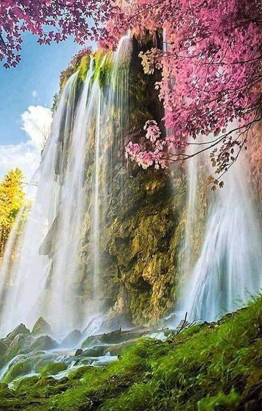 Landscape Nature Waterfall