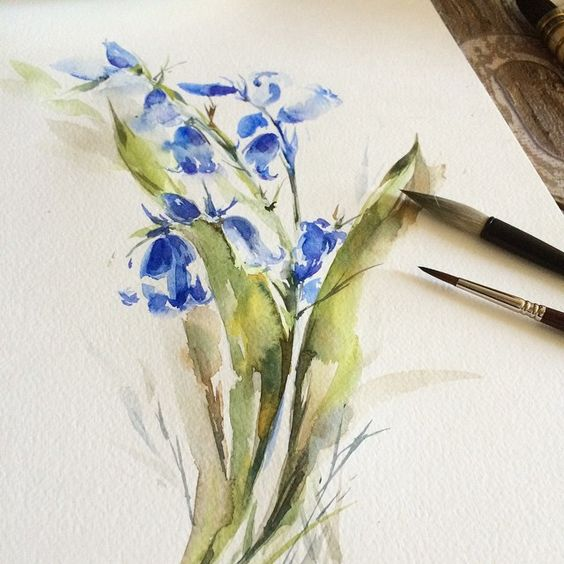 Summer... Moments... #aquarelle #bluebells #flowers #floral #flowerpainting #painting #paint #Watercolor #watercolour #watercolorpainting #sketchbook #sketching #sketch #sketch_daily #moanart #modern #arts_help #art #arts_gallery #Art_Spotlight #instaart #aartistic_dreamers #topcreator #canotstop #etsy