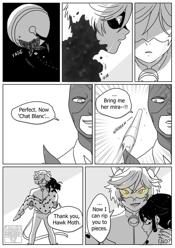 Star du porno noir chaton