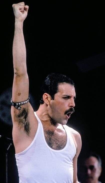 Pin On Freddie