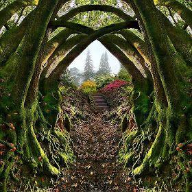 Secret garden  Portland Oregon