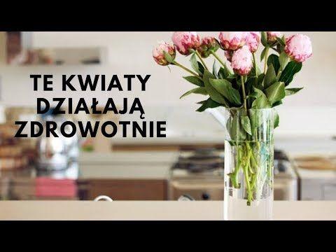 5 Kwiaty Doniczkowe Ktore Poprawia Twoje Zdrowie Musisz Miec Je W Swoim Domu Youtube Indoor Plants Plants Indoor
