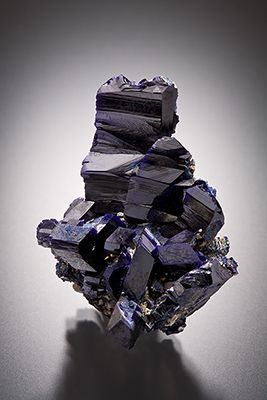 A cluster of lustrous dark blue azurite crystals up to 1.6 cm tall.